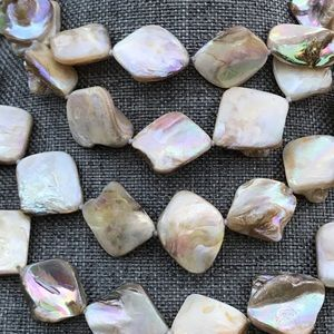 Jewelry - 56 Inch Knotted Shell Square Necklace